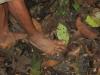 Ocata Waorani hiking shoeless