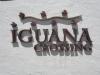 \'iguana crossing\'