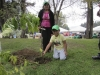 Reforestation in Quito Park