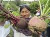 Organic Garden Otavalo