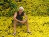 Corteza Amarilla flowers